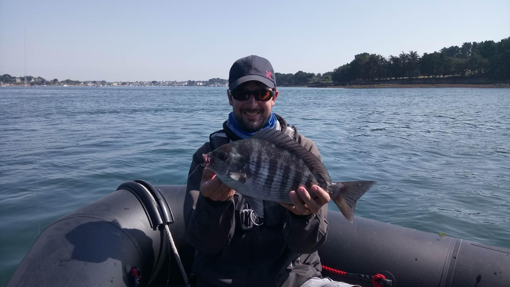 Belle pêche de dorade grise sur le Golfe du Morbihan, avec Mickaêl RIO, moniteur, guide de pêche ©