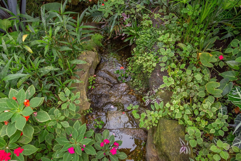 jardin-aux-papillons-morbihan-bretagne-sud-32 © © Magalie BARRE