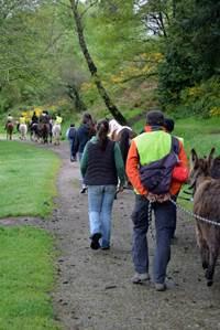 Sortie Nature et culture avec Kerant'ânes