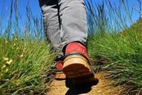 Les randonnées du lundi à Pluvigner - le 10 août