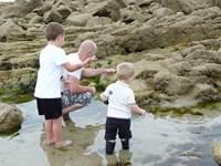 Pêche à pied et découverte de l'estran à Erdeven