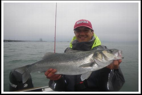 Bretagne Esprit Pêche - guide de pêche