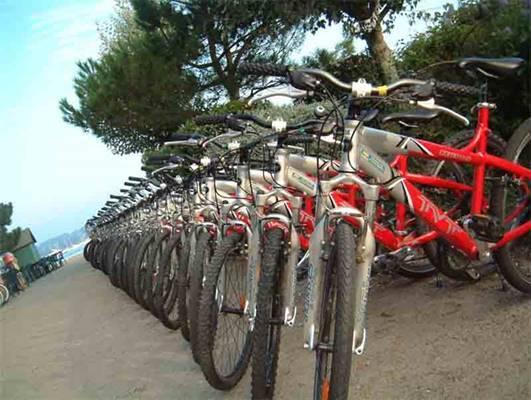 Abbis Location Vélos et Rosalies - Sarzeau