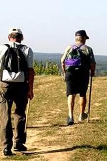 Les randonnées du jeudi 2ème semestre