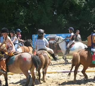 Kerguélen Equitation