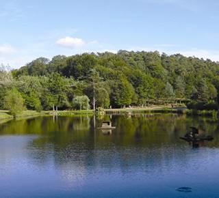 Site du Petit bois à Camors