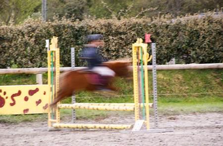 Concours de saut d'obstacles
