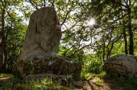 Marche et Qi Gong dans les mégalithes d'Erdeven