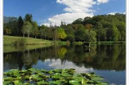 Pêche parcours L'étang du petit bois
