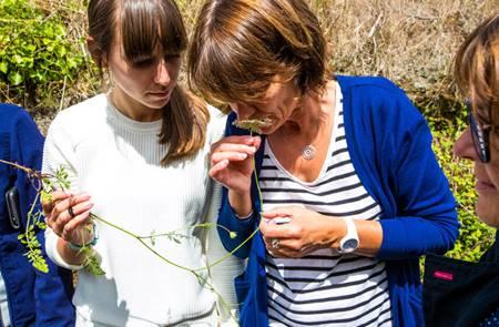 A la Découverte des Plantes Comestibles avec Mélanie Chouan