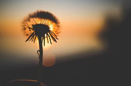 Balade dans les Grées au lever du soleil
